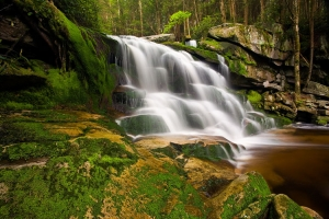 Elakala Falls, Blackwater Falls State Park, West Virginia (VW), USA