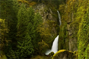 Wahclella Falls, River Gorge, Oregon (OR), USA
